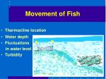 movement of fish20