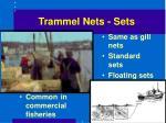 trammel nets sets