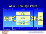 wlc the big picture