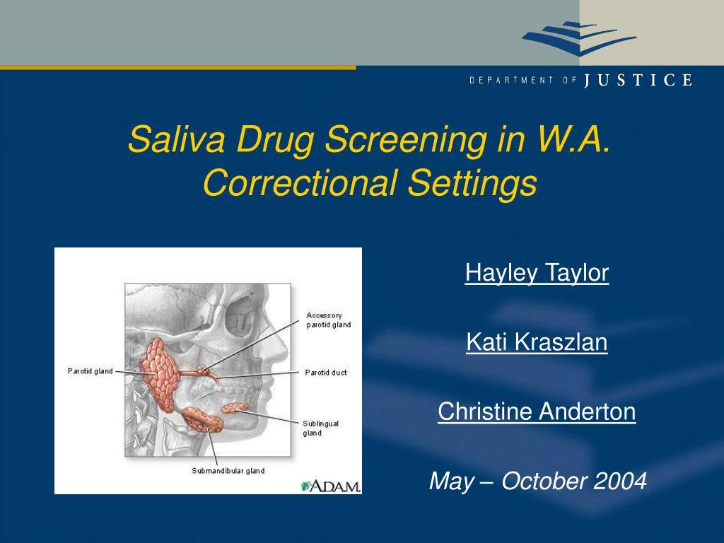 saliva drug screening in w a correctional settings l.