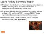 leave activity summary report