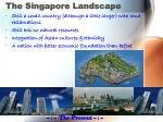 the singapore landscape3