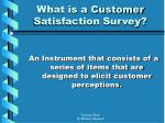 what is a customer satisfaction survey