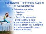 self esteem the immune system of consciousness4