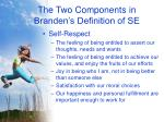 the two components in branden s definition of se10