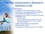 the two components in branden s definition of se7