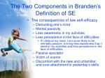 the two components in branden s definition of se8