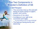 the two components in branden s definition of se9