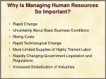 why is managing human resources so important