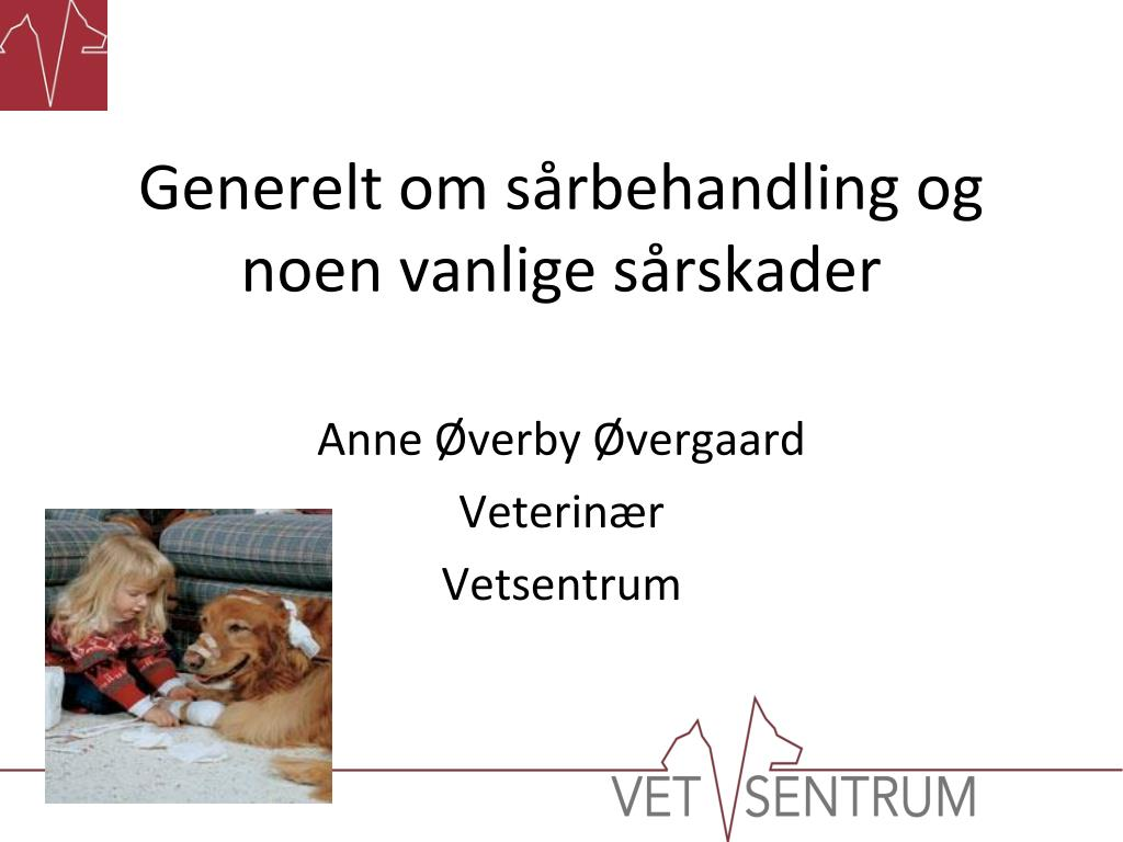 anne verby vergaard veterin r vetsentrum l.