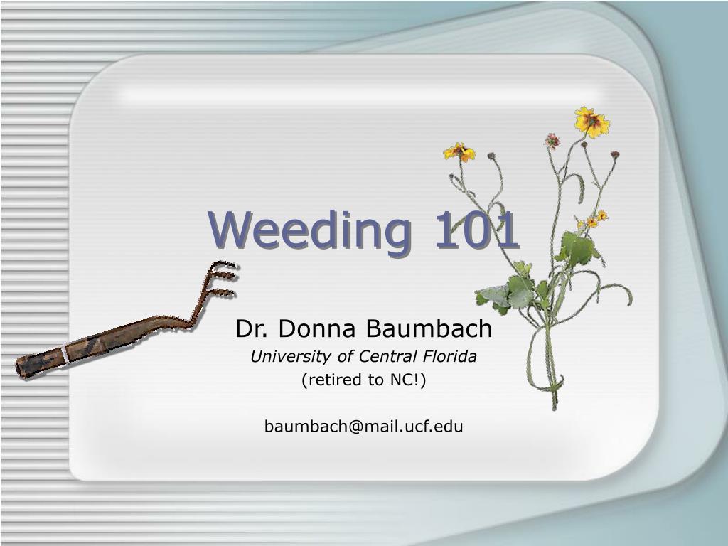 weeding 101 l.