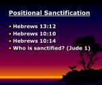 positional sanctification8