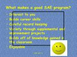 what makes a good sae program