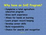 why have an sae program