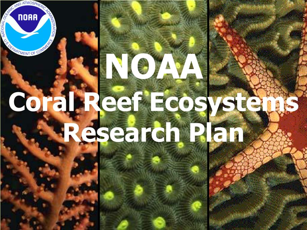 noaa coral reef ecosystems research plan l.