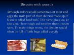 biscuits with weevils