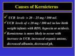 causes of kernicterus