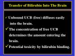 transfer of bilirubin into the brain