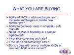 what you are buying