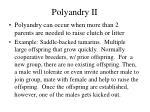 polyandry ii