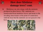 how does mistletoe damage trees cont56
