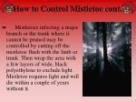 how to control mistletoe cont65