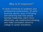 why is ei important24