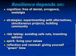 resilience depends on