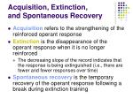 acquisition extinction and spontaneous recovery35