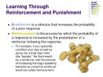 learning through reinforcement and punishment