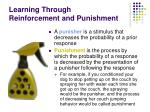 learning through reinforcement and punishment26