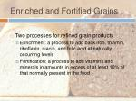enriched and fortified grains