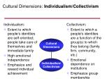 cultural dimensions individualism collectivism