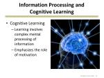 information processing and cognitive learning