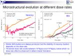 microstructural evolution at different dose rates
