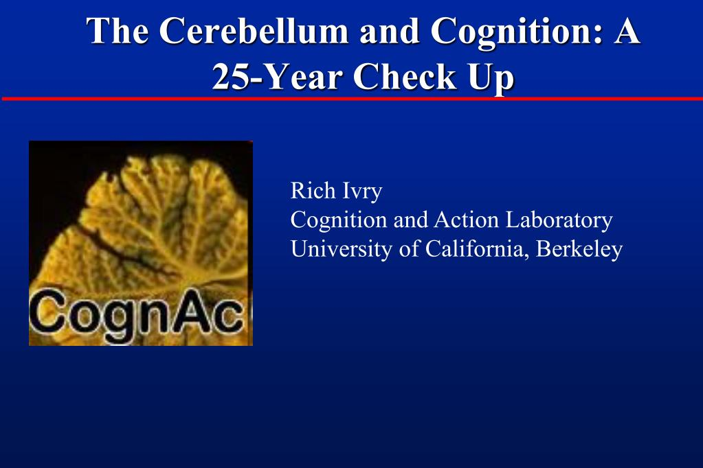 the cerebellum and cognition a 25 year check up l.