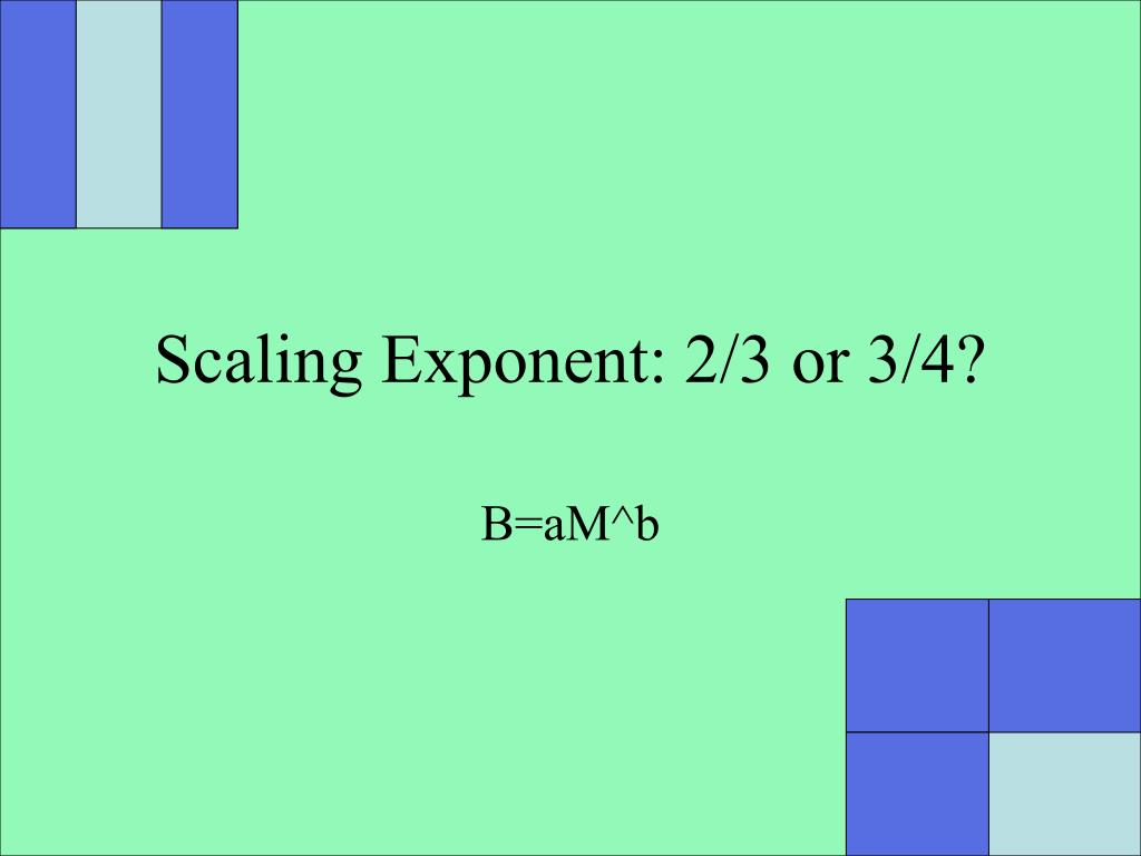 scaling exponent 2 3 or 3 4 l.