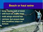 beach or haul seine