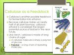 cellulose as a feedstock