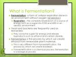 what is fermentation
