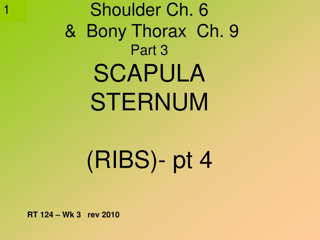 shoulder ch 6 bony thorax ch 9 part 3 scapula sternum ribs pt 4 l.