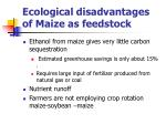 ecological disadvantages of maize as feedstock