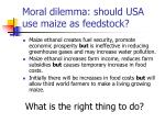 moral dilemma should usa use maize as feedstock