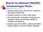 starch to ethanol maize disadvantages maize