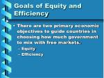 goals of equity and efficiency