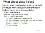 what about class fields