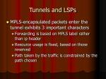 tunnels and lsps