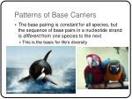 patterns of base carriers11