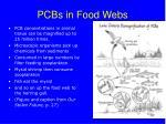 pcbs in food webs