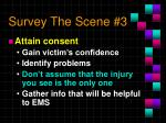survey the scene 3